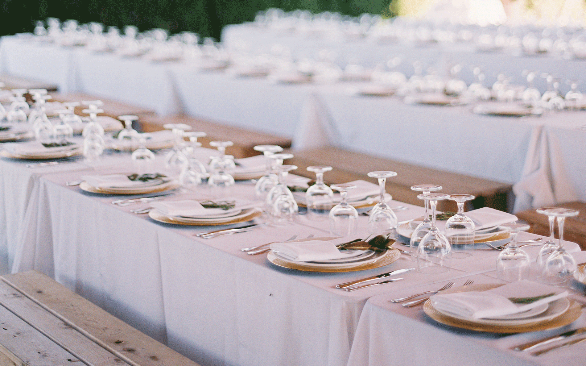 Let us help you create the perfect event